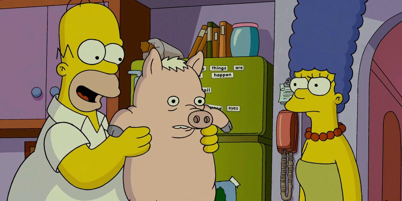 Simpsons Movie Sequel Could Still Happen Cbr