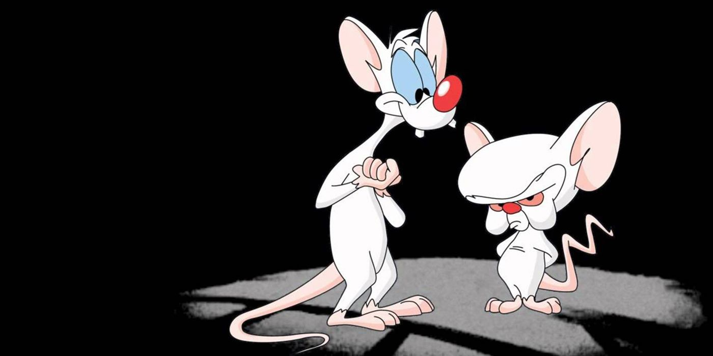 Pinky and the Brain, Animaniacs Producer Gordon Bressack Passes Away at 68