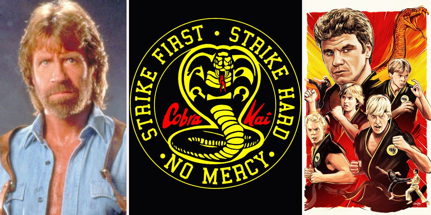 The Karate Kid: 15 Things You Didn't Know About Cobra Kai | CBR