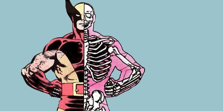 Squelette d'Adamantium de Wolverine