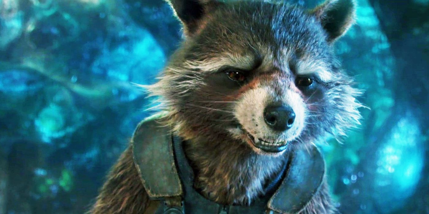 Image result for rocket raccoon