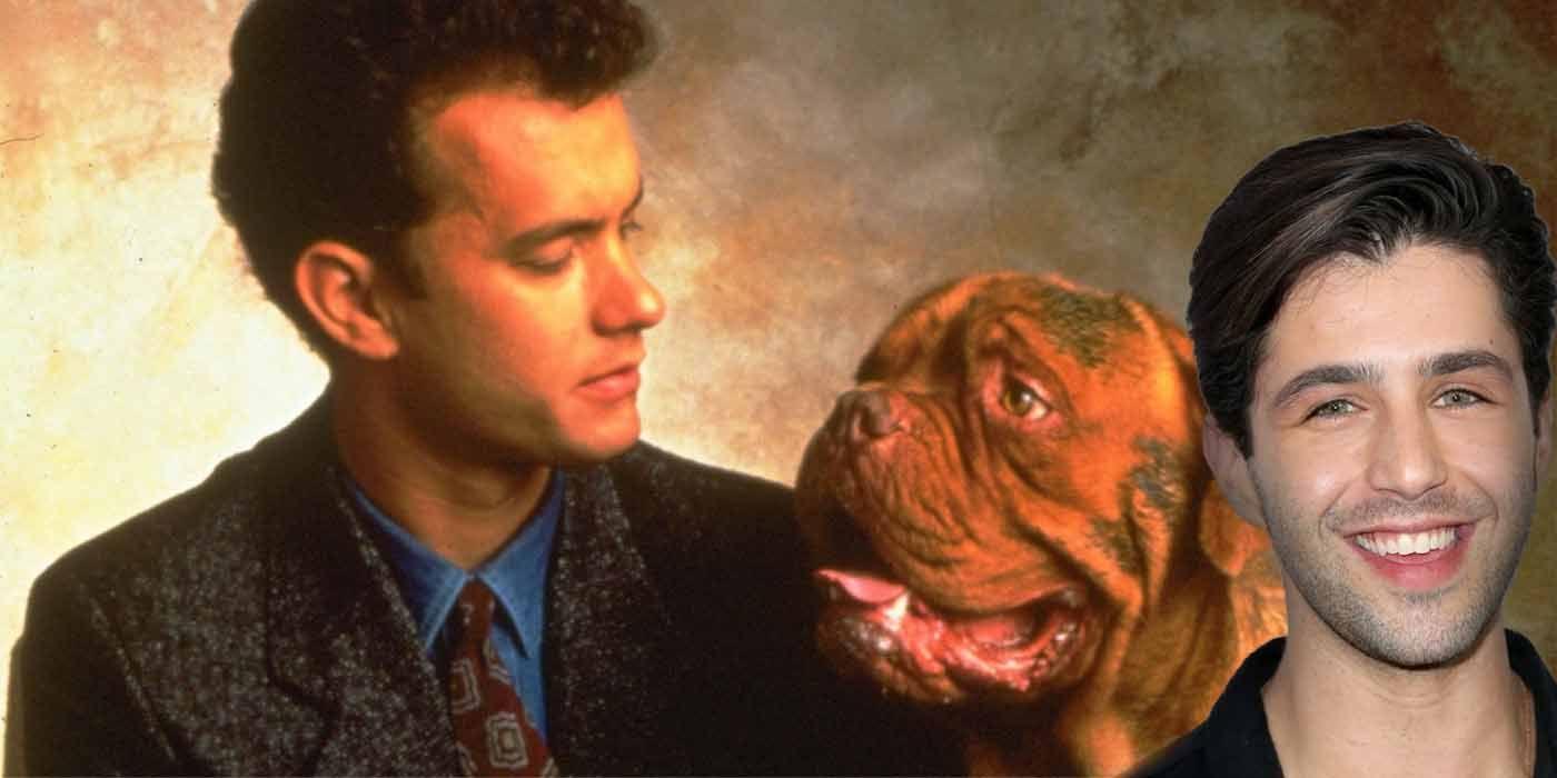 Turner & Hooch Reboot Lands Star, Ordered to Series at Disney+