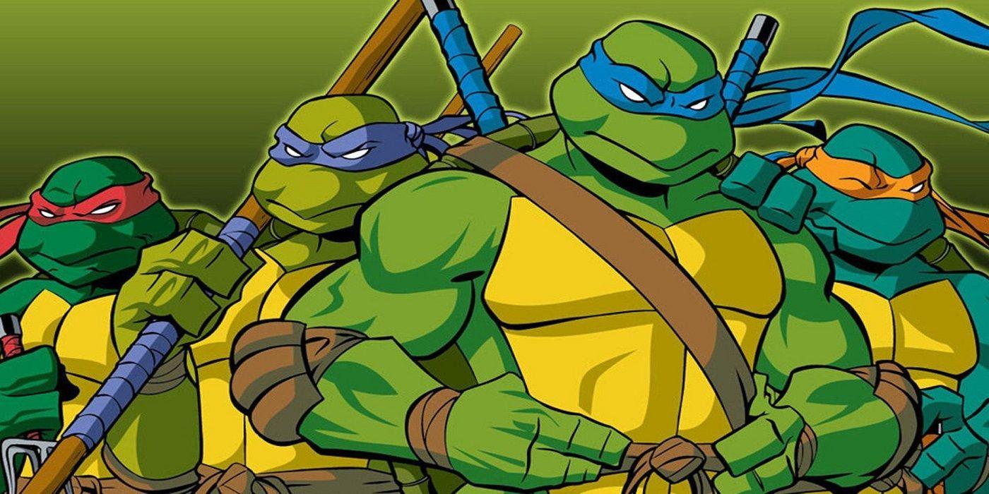 Teenage Mutant Ninja Turtles Did 2003 S Tmnt Feature The Best Origin